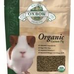 Organic Guinea Pig